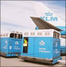 Horse Shipping Quotes Classy Slush Creek Walkers Horse Transport