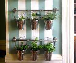 Kitchen Herb Garden Indoor Indoor Kitchen Garden Hanging Indoor Herb Garden Image Of Home