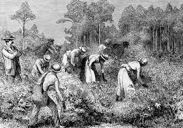 The Antislavery Movement Was Referred To As Slavery How Womens Key Role In Abolition Has Yet To Receive The