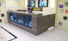 furniture for fish tank. large size of furniturefish tank creative kitchen design fish furniture for