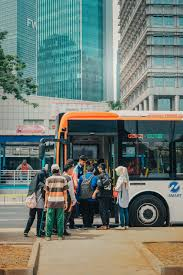 Image result for Free Public Transport