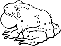 Small Picture Coloring Pages Draw A Toad Free Printable Toad Coloring Pages For