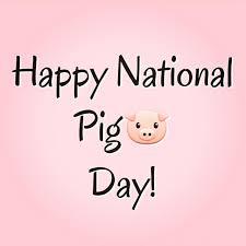 happynationalpigday Instagram posts (photos and videos) - Picuki.com