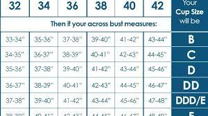Bra Size Chart Letters Bra Size