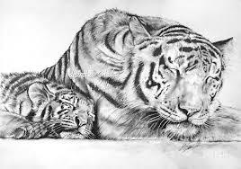 Disegna Quello Che Sei Cosa Disegno Yahoo Answers Con Animali Da