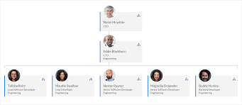 Live Org Chart Live Directory Now Delivers Personalized Organizational Charts