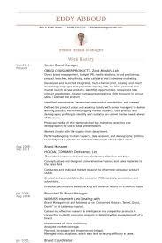 Senior Brand Manager Resume samples