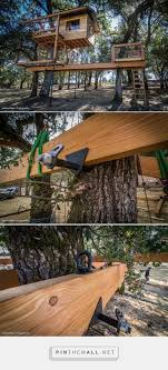 Exotic Tree Houses Best 20 Treehouse Cabins Ideas On Pinterest Tree House Designs