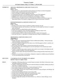 Resume Professional Services Professional Services Consultant Resume Samples Velvet Jobs
