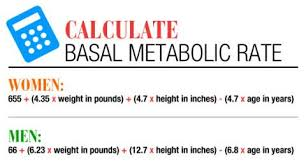 Basal Metabolic Rate Bmr Chart Calorie Calculator Find Out How Many Calories You Need