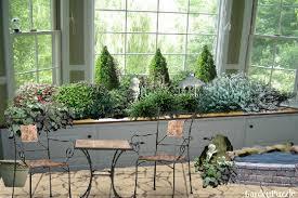 indoor window garden. indoor window shrub garden o