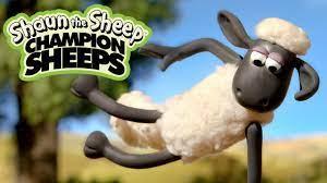 Thể dục dụng cụ | Championsheeps | Những Chú Cừu Thông Minh [Shaun the  Sheep] - YouTube