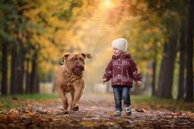 Image result for pictures of little child and dog