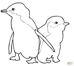Mr Poppers Penguins Coloring Pages - Eliolera.com