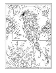 8f3fafa2232f4640f4751c5ca31fd628 adult coloring pages colouring pages 1233 best images about \