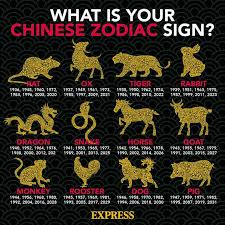 Has that got you wondering the 12 animals are fixed in their order because of the chinese yin and yang theory, china highlights states. Chinese New Year Animals In Order Find Out Which Zodiac Sign You Are Express Co Uk