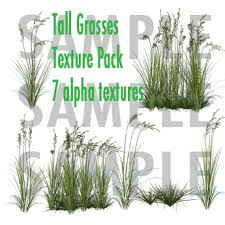 Second Life Marketplace FULL PERM 7 Tall Grass Alpha Textures