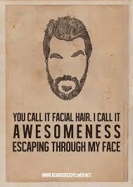 Beard Quotes Impressive 48 Beard Quotes QuotePrism