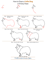 easy dog drawing tutorial.  Drawing How To Draw A Collie Dog  StepbyStep Tutorial With Easy Drawing O