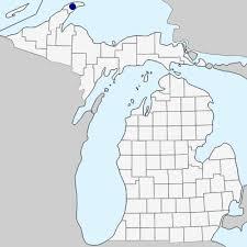 Phleum alpinum - Michigan Flora