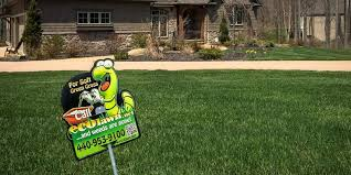 Lawn Care In Ohio Environmentally Friendly Ecolawn