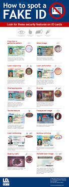 Infographic Guide Fake I How To Spot Drivers A d License WvWYzn6