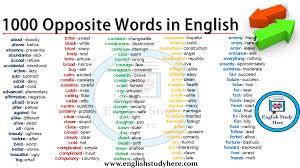 1000 Opposite Words In English Detailed Opposite Word List