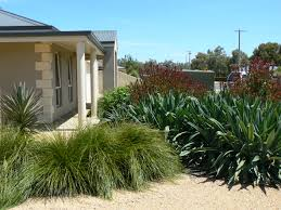 Small Picture Making a dry tolerant garden Roy Roberts Landscapes