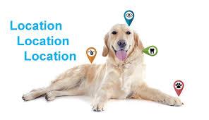 Dog Lymph Node Location Chart Melanoma Location Location Location Upstate Vet