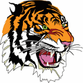 Schedule - <b>Springfield Tigers</b> Football (MN) | MaxPreps