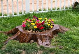 Tree Stump Garden 12