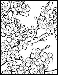 Small Picture Free Cherry Blossom Coloring Page To Print Out Fun Coloring