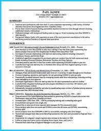 Automobile Sales Resume Sales Sales Lewesmr Car Sales Automotive