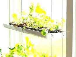 indoor window garden. window garden shelves indoor gardening green design innovation o