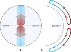 what is the coriolis effect for kids. atmospheric circulation sans earth rotation. what is the coriolis effect for kids s