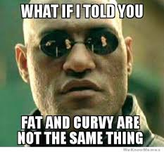 Fat Vs Curvy | WeKnowMemes via Relatably.com