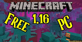 minecraft 1 16 4 pc java