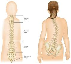 Child spine curvature