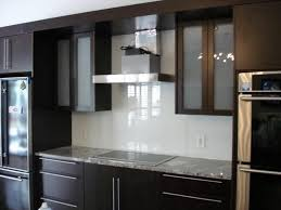 Modern Glass Kitchen Cabinets Kitchen Clear Glass Kitchen Cabinet Door Decor With White Small