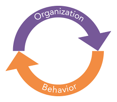 What Is Organizational Behavior What Is Organizational Behavior Organizational Behavior