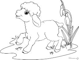 116 Dessins De Coloriage Mouton Imprimer Dessin Dessin De Mouton A Colorier Et Imprimer L