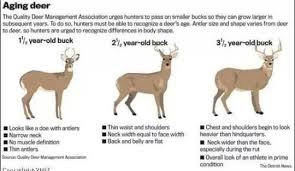 Hunting Season Chart Pin By Dustin Norman On Hunting Outdoors Deer Hunting Tips