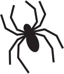 Pictures Of Simple Spider Outline Kidskunst Info