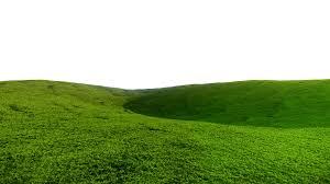 grass field background. Grass Field Background Clipart Cliparts Suggest Vectors G