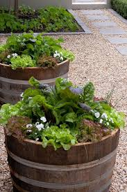 Small Picture 25 best Container vegetable gardening ideas on Pinterest