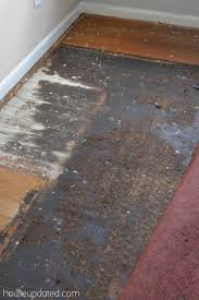 how to remove carpet from hardwood floors black glue hardwood floor2 how to remove carpet pad
