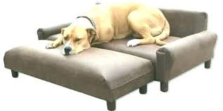 animal friendly furniture. Pet Resistant Furniture Proof Amazing Couch For Cat  Sofa Best . Animal Friendly