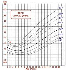 4 Year Old Growth Chart Cdc Example 1 Visual Assessment Vs Calculation Of Bmi