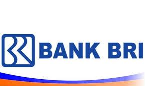 Hasil gambar untuk logo bank bri