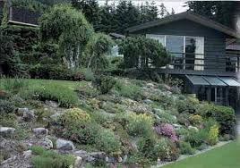 Small Picture Traditional Rock and Alpine Garden Ideas Traditional Rock and